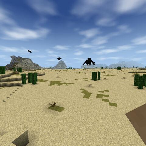 La arena en el desierto.