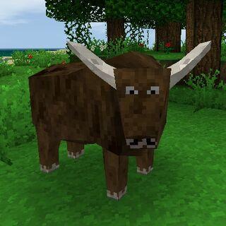 Toro marrón