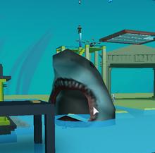 Shark Attacking