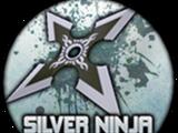 Silver Ninja Stars