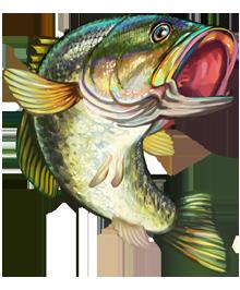 image 17 jumping bass game fish clipart png survivor malakal rh survivor malakal wikia com bass fish pictures clip art Bass Fish Silhouette