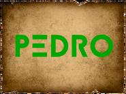 Pedroo2