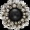 Dark Pearl icon