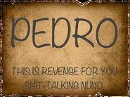 Pedroo1