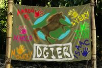 Tribe Flag Ogier