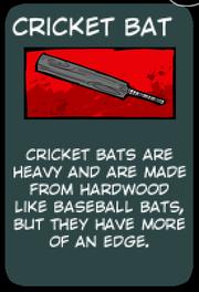 CricketBat (1)