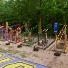Vata competes in the Immunity Challenge, <i><a href=