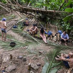 Manu building their shelter.