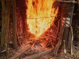 The Amazon Heats Up