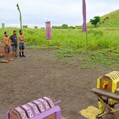 Preview of the Reward/Immunity Challenge.