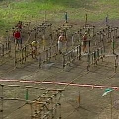 The tribe competes in the final eight Immunity Challenge.
