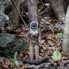 <i>Survivor: The Amazon</i> Immunity Idol.