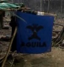 Aguila flag
