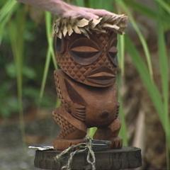 <i>Survivor: Cook Islands</i> Immunity Idol.