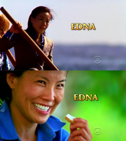 File:Intro sp edna.png