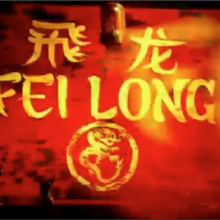 Fei Long's intro shot.