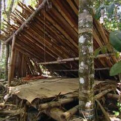 Pagong's shelter.