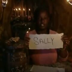 Cirie votes out Sally.
