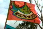 BarramundiFlag