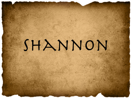 File:ShannonVote.png