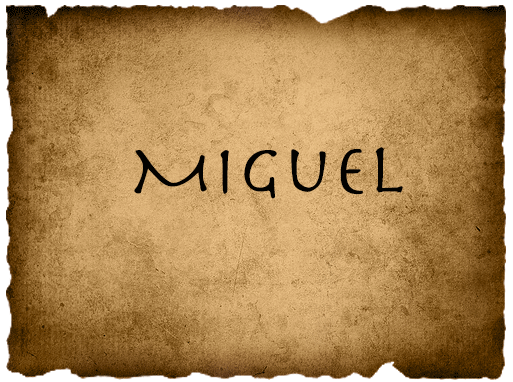 File:MiguelVote.png