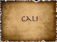 CaliVote