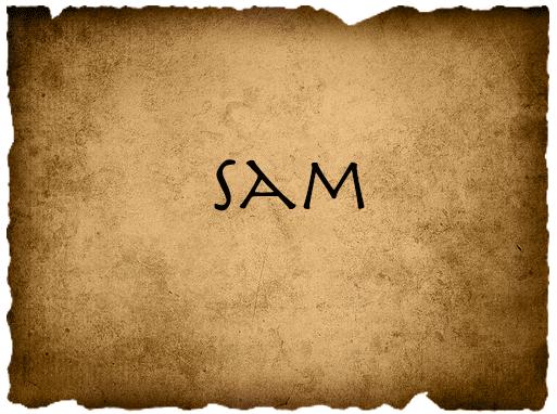 File:SamVote.png