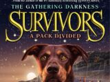 A Pack Divided/Cliffnotes