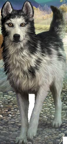 Alpha Character Survivors By Erin Hunter Wiki Fandom