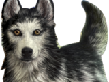 Alpha (character)