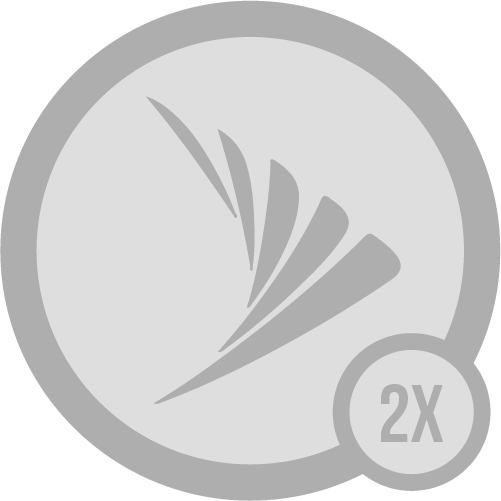 Badge sprint i 2x