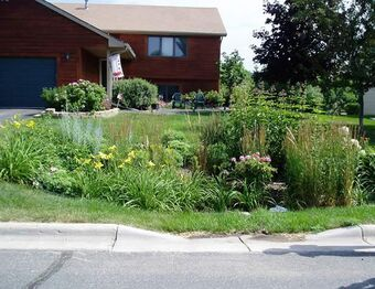 Rain Garden Design And Construction Sustainable Water Management