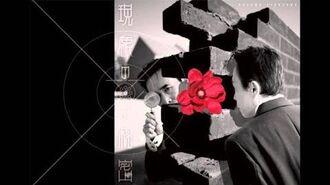Susumu Hirasawa 平沢 進 - Secret of the Flowers of Phenomenon 現象の花の秘密 (2012) full album-0