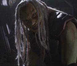 Wraith survivor