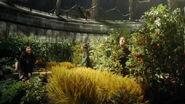 Destiny garden