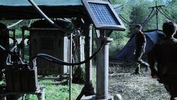 Novus solar power