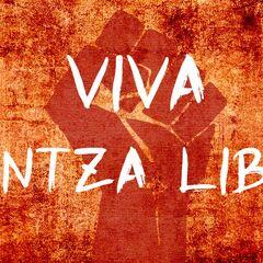 <b>Viva <a href=