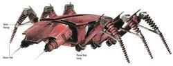 Scarab Droid