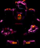 CaptureRobot