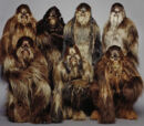 Wookiee Military