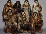 Chewbacca family