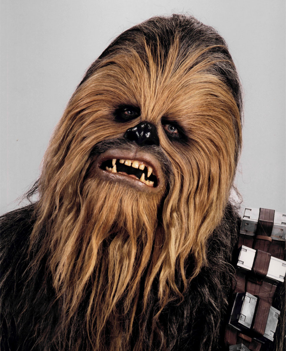 Image result for star wars chewbacca