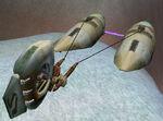 Longtail-podracer