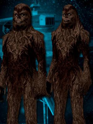 Wookieenew