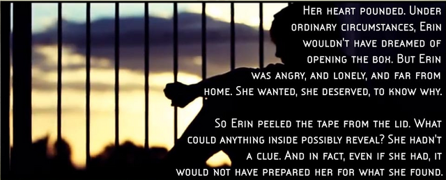 File:Erin quote.PNG