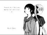 Sword Art Online Material Edition 05
