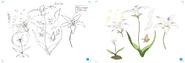 Design Works Pneuma Flower concept