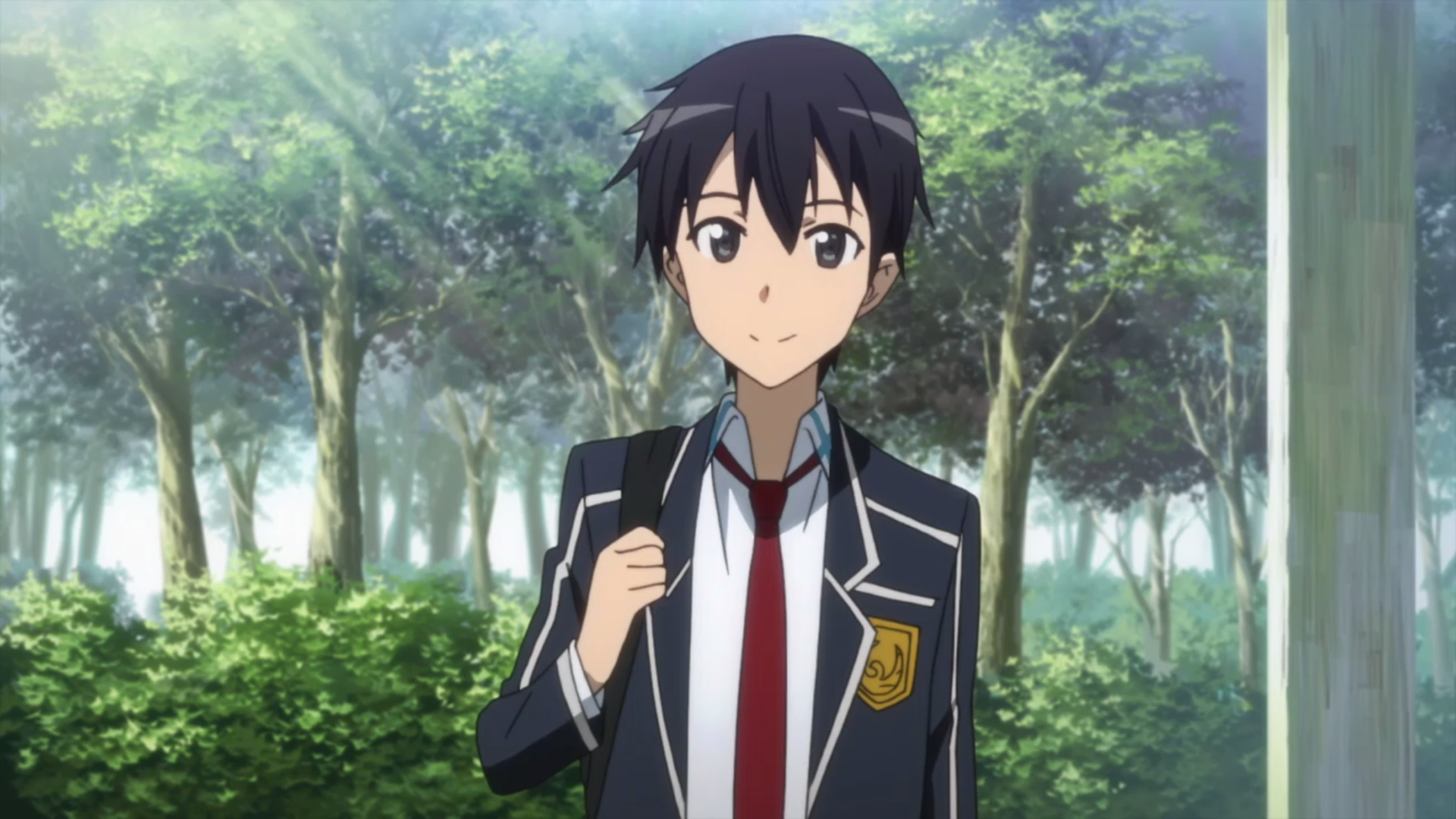 Kirigaya Kazuto | Sword Art Online Wiki | FANDOM powered by Wikia