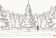 Design Works concept for The giant fir tree in the Forest of Wandering