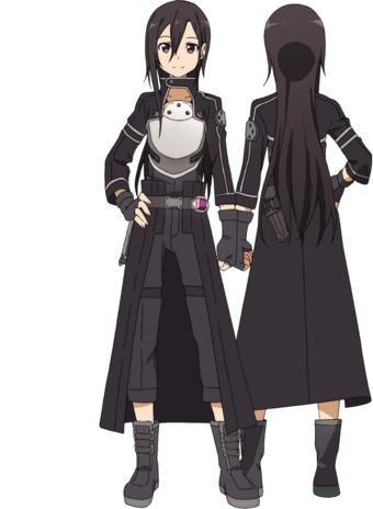 what level was kirito at the end of sao